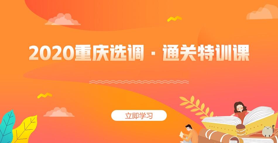 重庆选调通关特训课