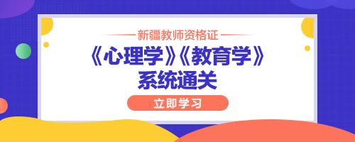 2020新疆教师资格证《心理学》《教育学》系统通关