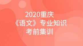 2020重庆《语文》专业知识考前集训