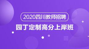 (笔试)2020四川教招园丁定制高分上岸班