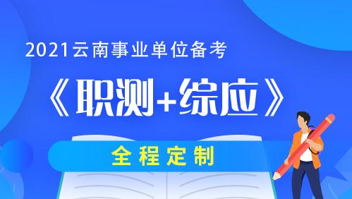 2021云南事业单位《职测&综应》系统精讲