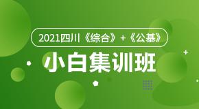 2021四川《综合》+《公基》小白集训班